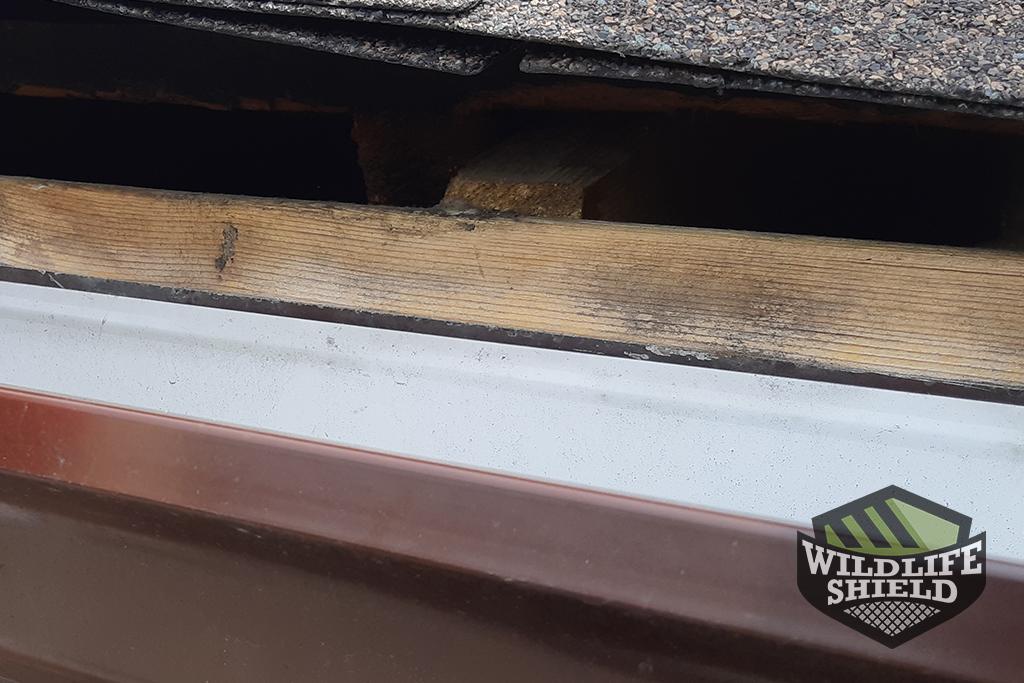 Open roof edge